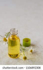 Natural cosmetic. Essential oil in a bottle with fresh chamomile flowers on a light background. Selective focus.