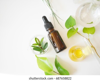 natural cosmetic skincare bottle container and  organic green leaf , flowers ingredients with the laboratory glassware on white background. Home made remedy and beauty product concept.