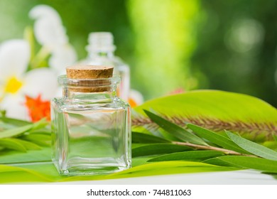 natural cosmetics bottle containers with green leaf on white background,natural beauty skincare product,  beauty product concept