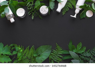 Natural cosmetics and green leaves on black background, copy space. Natural organic skincare, bio research and healthy lifestyle concept.