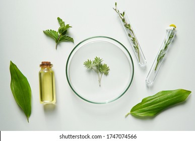 Natural cosmetics laboratory research, bio science, organic skin care, plants and cosmetic oils, beauty from nature.