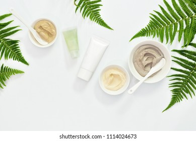 Natural cosmetics set with various kinds of cosmetic clays ready for spa treatment decorated with fern leaves, flat lay composition with blank space for a text
