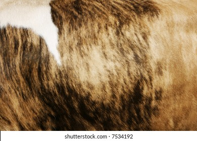 Natural cow hide background with striped texture