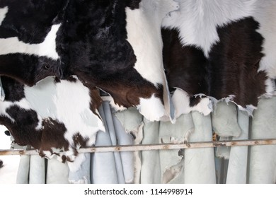 Natural cow skin are sold in the market for fashion and craft
