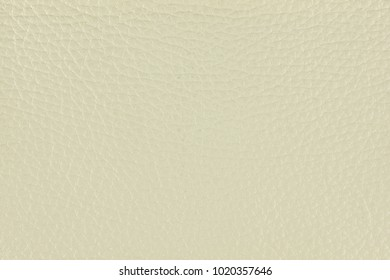 Natural creme leather texture. Top view.