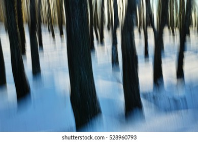 natural development of an abstract forest