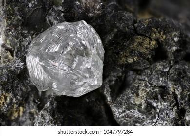 natural diamond nestled