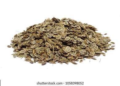 Natural dill seeds (Anethum graveolens)