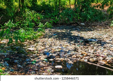 Natural Disaster At Standing Water, illegally dump in nature