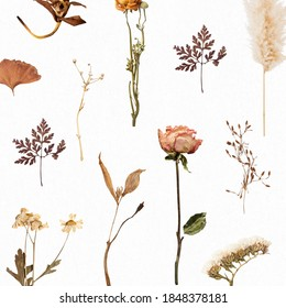 Natural dried flower wallpaper pattern