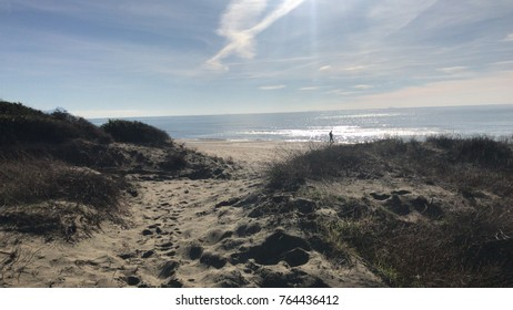 Natural Dunes before the beach