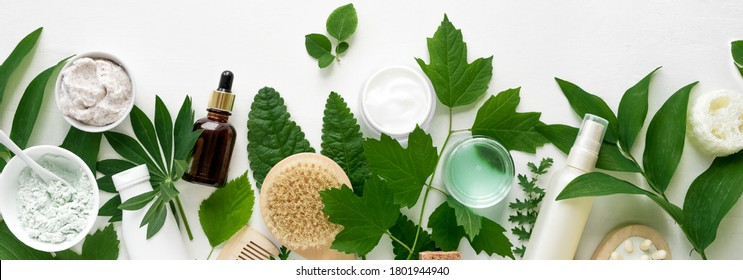 Natural eco beauty. Cosmetic products and green leaves on white background, top view, banner. Natural organic skincare, spa, healthy lifestyle concept.