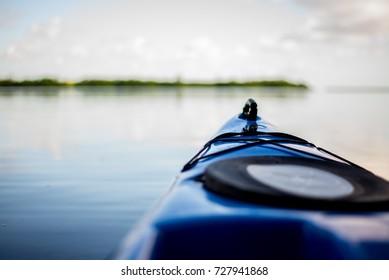 Natural Florida Wetlands Swamp Flats In Vero Beach, Florida