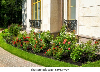 Natural flower landscaping in home garden. Beautiful landscaped garden with a flowerbed and paving pathway. Red flowers in the house yard in sunlight.