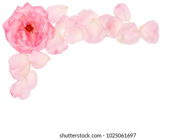 watercolor floral wedding corner stock photos images photography