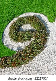 Natural flowerbed - number nine