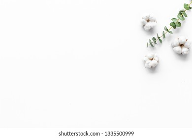 Natural flowers composition with eucalyptus branches and cotton on white background top view, flat lay copy space