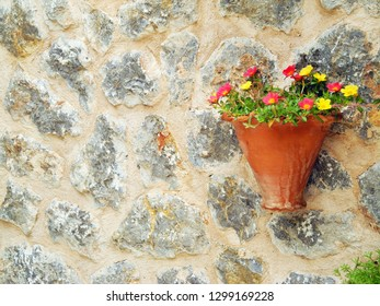 Natural flowers in pot on the stone wall background Majorca, Valdemossa