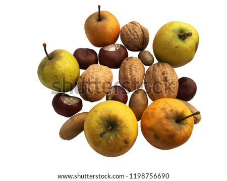 cbd316994185 Natural Fresh Autumn Walnut Apples On Stock Photo (Edit Now ...