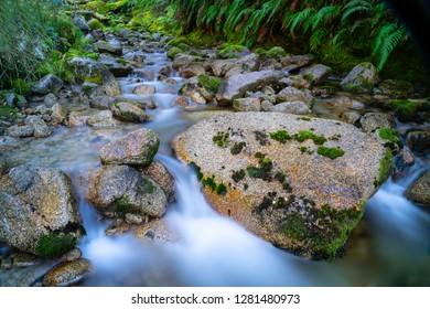 Natural fresh clean water flowing through and around granite bolders through lush green New Zealand bush.