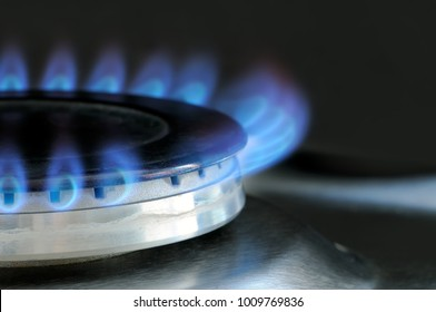 Natural gas burning on kitchen gas stove. Panel from steel with a gas ring burner on a black background, macro shooting