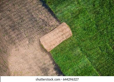 Natural Grass Garden Turfs Installation Photo Concept. Grass Turf Background.