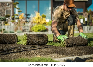 Natural Grass Installation by Professional Caucasian Gardener in His 30s.