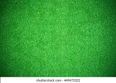 Natural grass texture patterned background