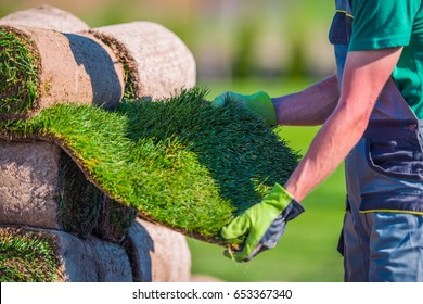 Natural Grass Turf Check Before Installation in a Garden.
