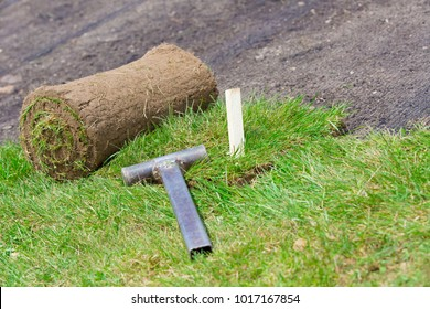 Natural grass turf professional installing. Wood stick and hammer tool for fixing rolled sod on soil and erosion control mesh during lawn reseeding