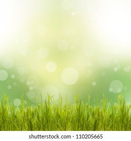 Natural green background with grass