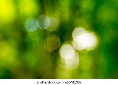 Natural green blurred background, Bokeh green leaves