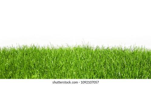 Natural green grass banner