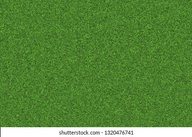 Natural Green grass texture. Perfect Golf or football field background. Top close up view, horizontal