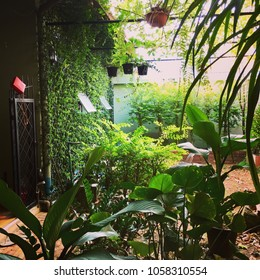 Natural green space for your house