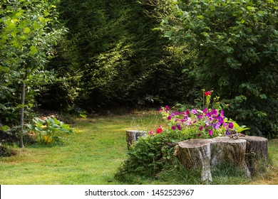 Natural handmade flower bed from stubs and stones in summer time. Stubs in landscaping forest design. Purple and red petunia and red dahlias.