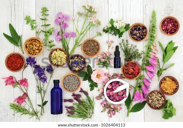 Seleção de ervas naturais com ervas e flores em taças de madeira e soltos, frascos de óleo essencial de aromaterapia de vidro e argamassa com pilão sobre fundo de madeira rústica. Vista superior.