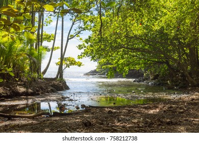 Natural hidden bay near a botanical garden on Big Island, Hawaii