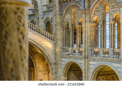 Natural History Museum Interior in London, United Kingdom