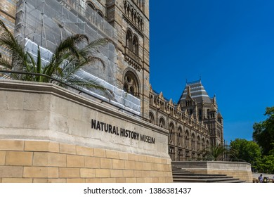 Natural History Museum in London, UK