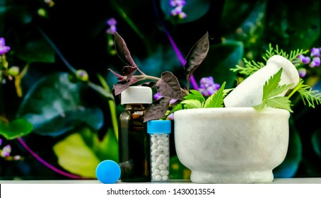 Natural Homeopathy Concept – Healing herbs in a mortar and pestle next to homeopathic medicine consisting a bottle of pills and liquid homeopathic substance with blurred green background