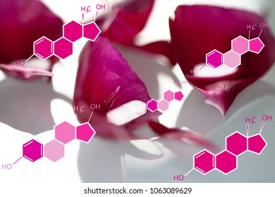 Natural hormone treatment concept. Structure formula of estradiol and drugs on tulip petals