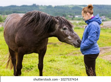 It is natural horsemanship, the young girl is taming a feral black horse. The tamer is working with a bronco based on the gentle animal training method. The human is communicating with a mare.