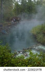 Natural hot springs pool at Liard Hot Springs, British Columbia, Canada