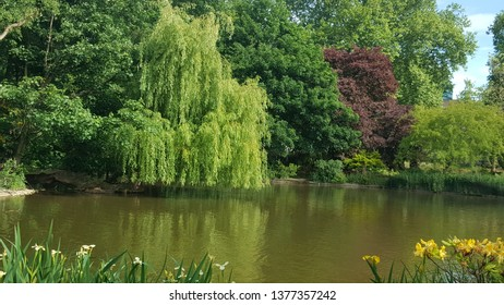 Natural lake miror