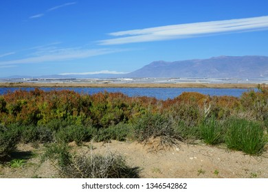 natural landscape around Almería in Andalusia, Spain