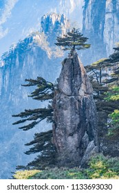 Natural landscape of dream pen flowers in Huangshan Scenic Area, Huangshan City, Anhui Province