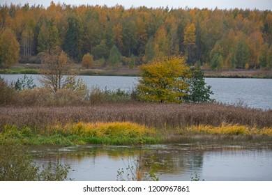 Natural landscape - fall on Volga