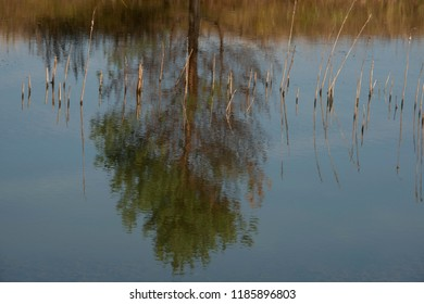 Natural landscape -  the fishing place