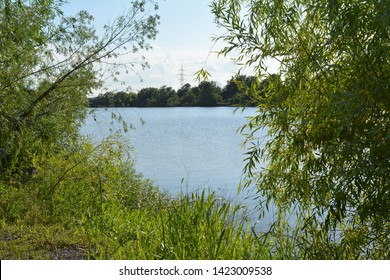 natural landscape with lake between trees
